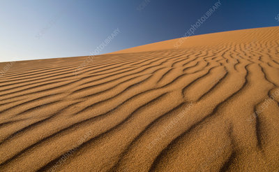Ripples on sand dunes in desert