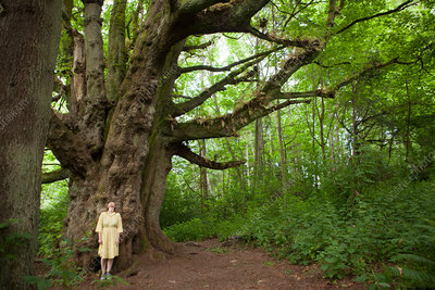 Young woman in forest in front of giant tree