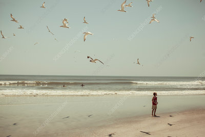 Boys standing on beach with gulls