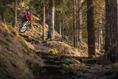 Female mountain biker riding down forest steps