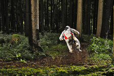 Mountain biker on muddy forest track