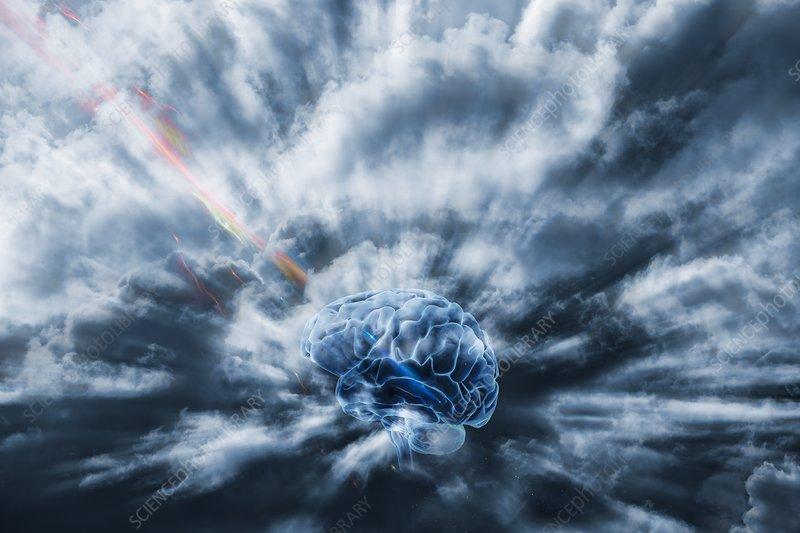 Human brain and communication
