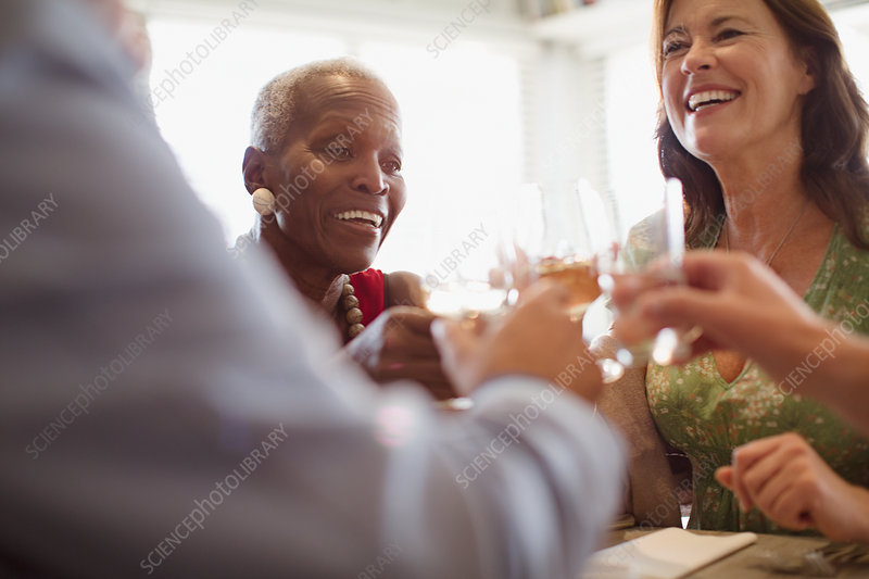 Smiling mature women drinking wine, dining