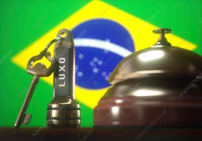Hotel key and bell with brazilian flag, illustration