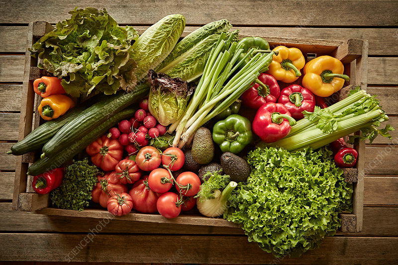Fresh vegetable harvest variety in wood crate