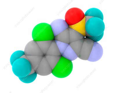 Fipronil insecticide molecule, illustration