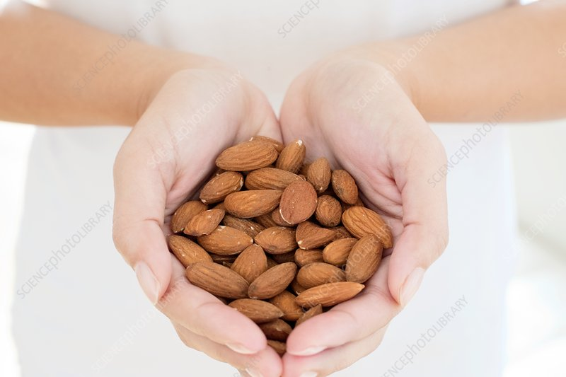 Woman holding almonds in hands