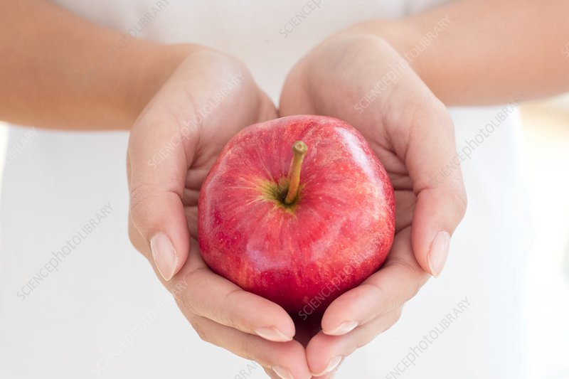 Woman holding red apple in cupped hands
