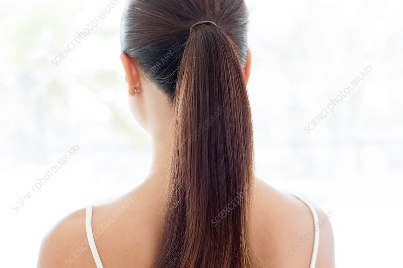 Woman with pony tail, rear view