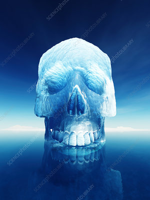 Human skull made from ice