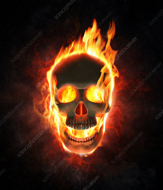 Human skull in flames