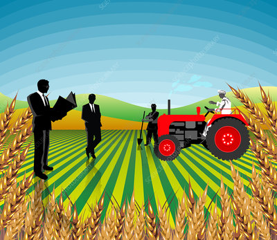 Businessmen and farmers in a field, India, illustration