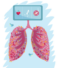 Healthy lungs, illustration