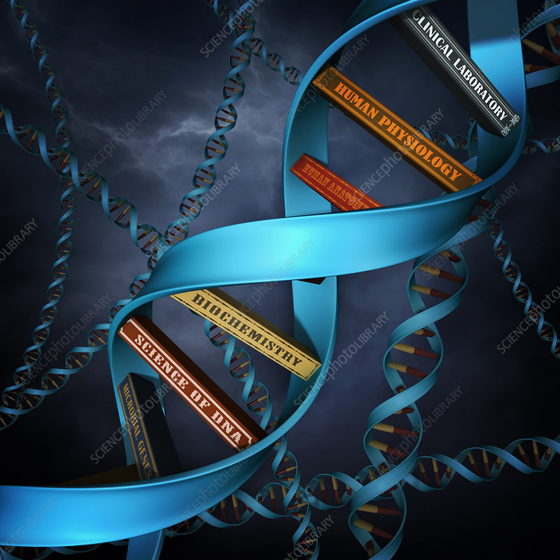 Illustration of DNA replica with books