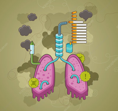 Illustration of effects of smoking on health
