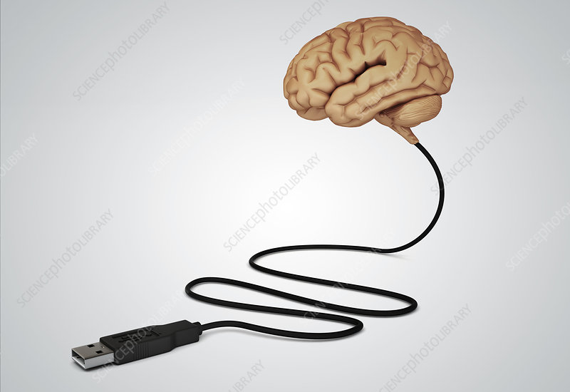 Illustration of human brain connected with USB cable