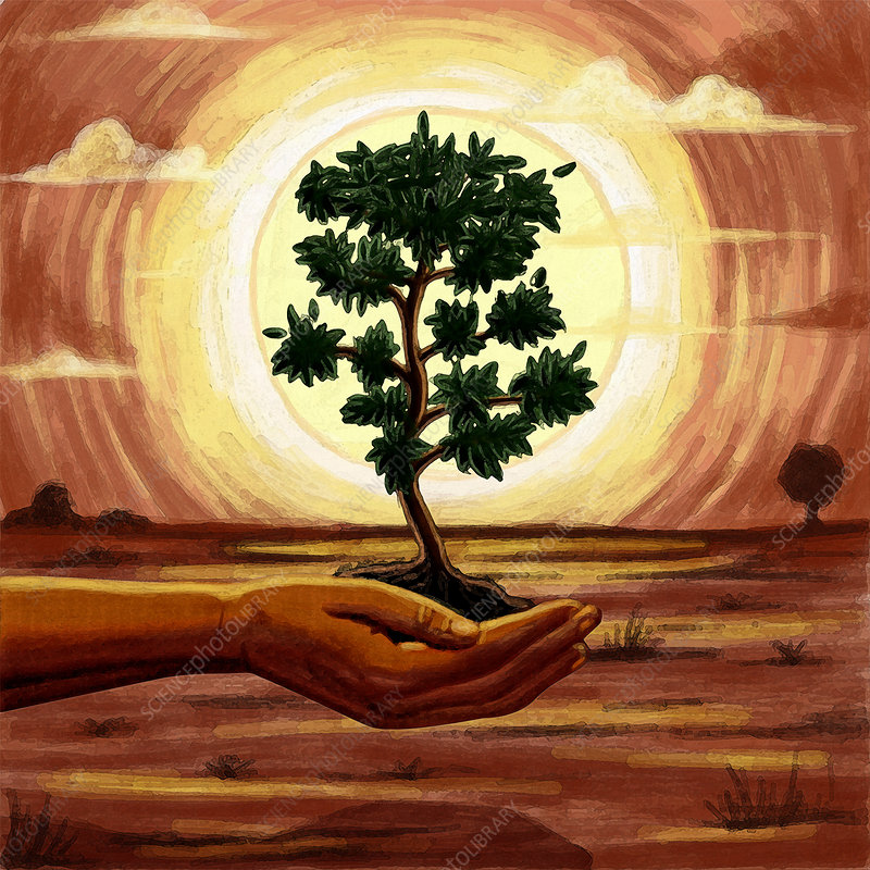 Illustration of human hand holding tree