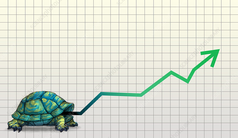 Illustration of tortoise with line graph