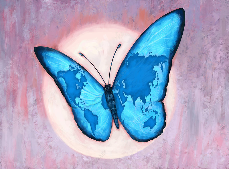 Illustration Of World Map On Butterfly Wings Stock Image F019