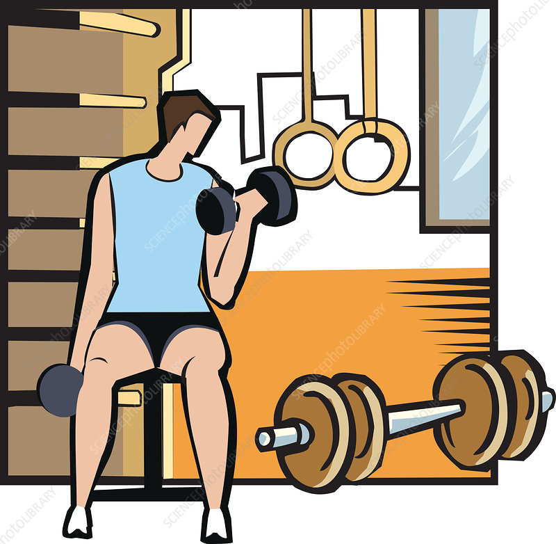 Man exercising with a dumbbell, illustration