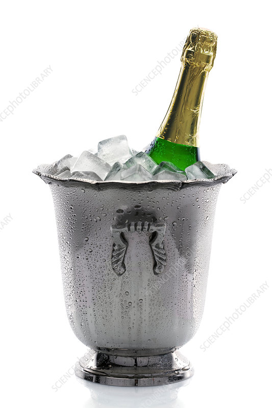 Champagne bottle in ice bucket, studio shot
