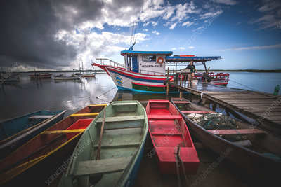 Fishing boats, Santa Catarina, Brazil