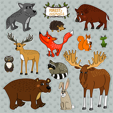 Forest animals, illustration