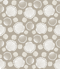 Scallop shells, illustration