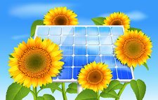 Sunflowers and solar panel, illustration