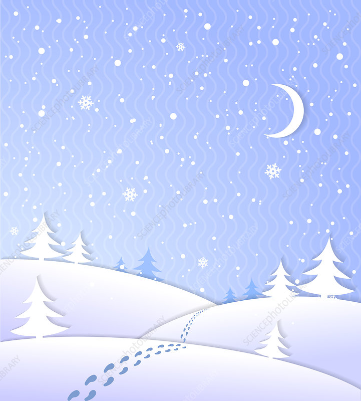 Winter scene, illustration