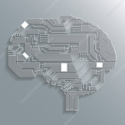 Circuit board brain, illustration