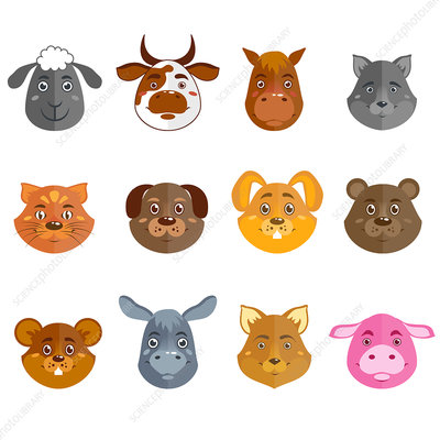 Wild and domestic animal faces, illustration