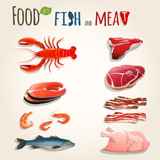 Fish and meat, illustration