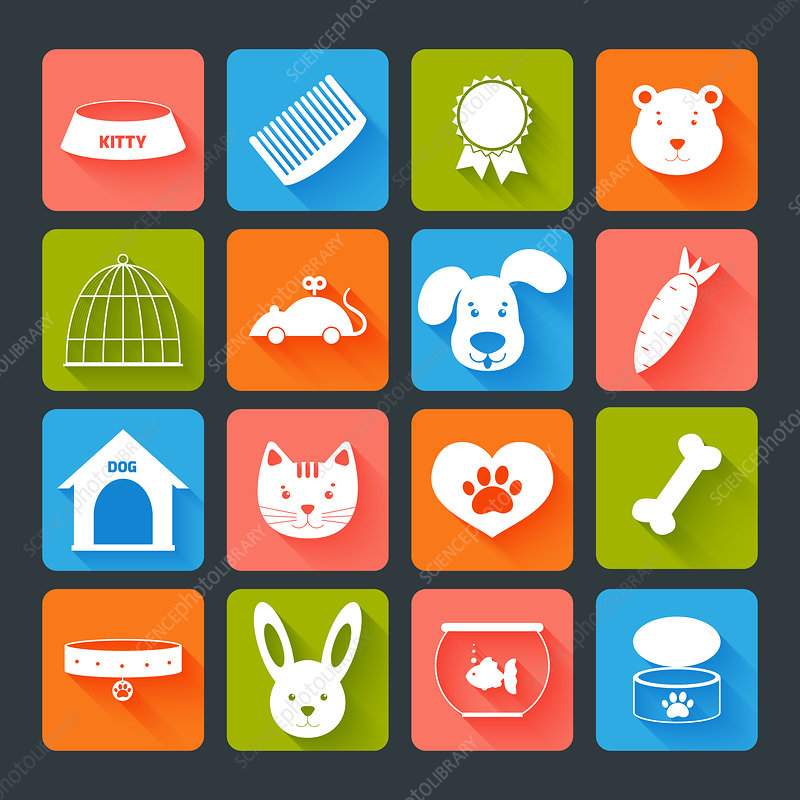 Pet icons, illustration