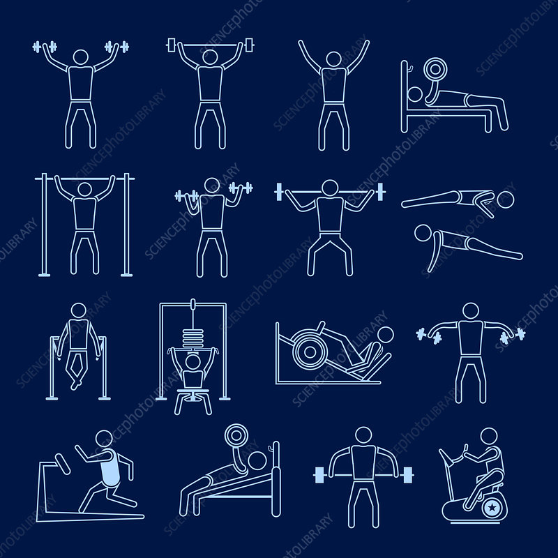 Exercise icons, illustration