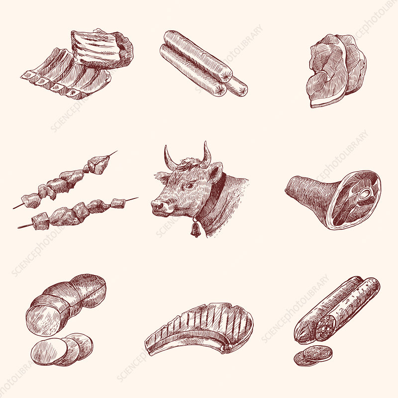 Meat products, illustration