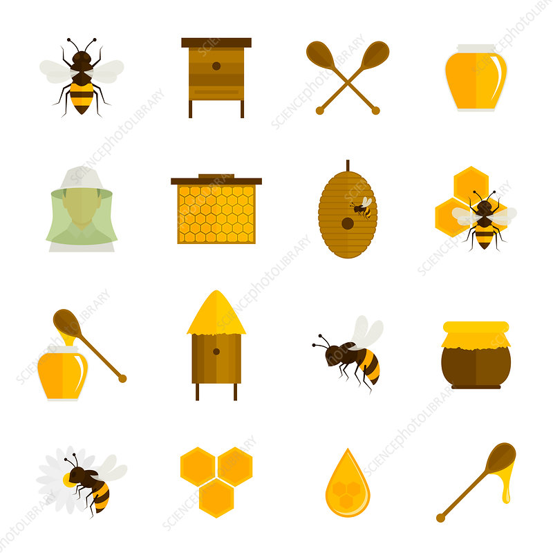Honey icons, illustration