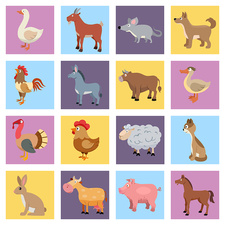Farm animal icons, illustration