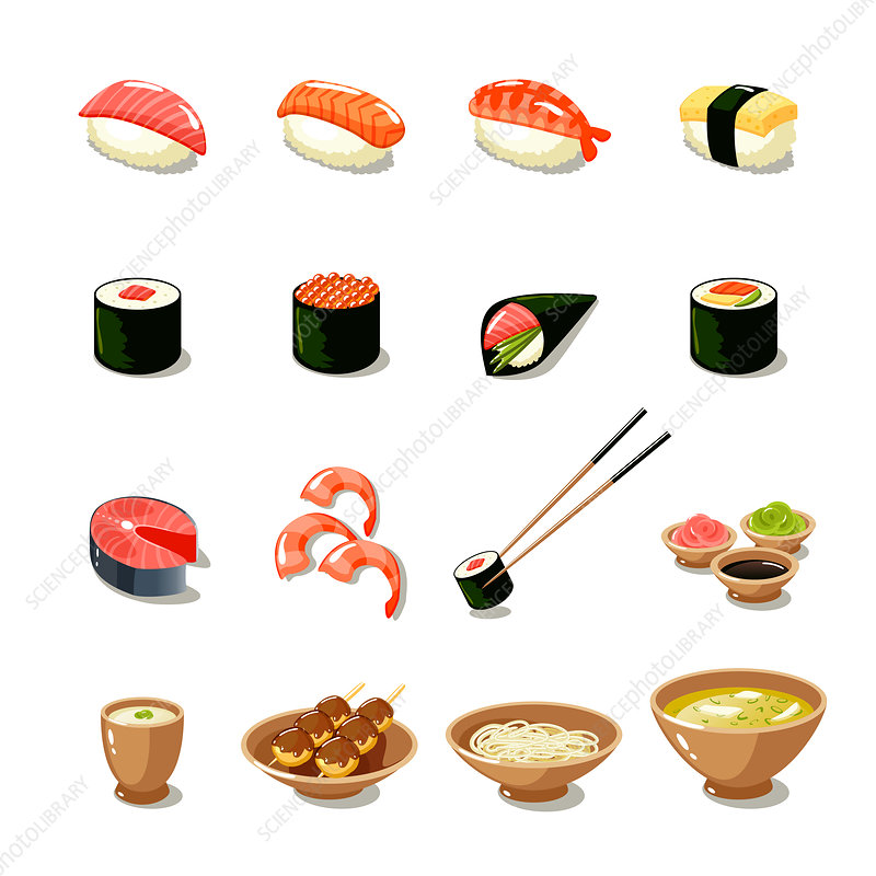 Japanese food, illustration