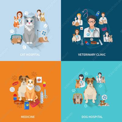 Veterinary medicine, illustration