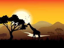 African landscape, illustration