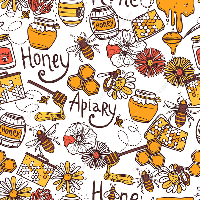 Honey, illustration