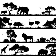 African landscapes, illustration
