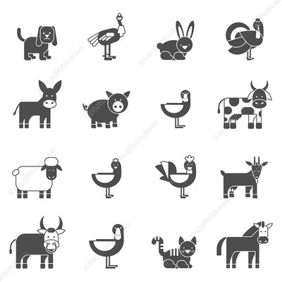 Animal icons, illustration