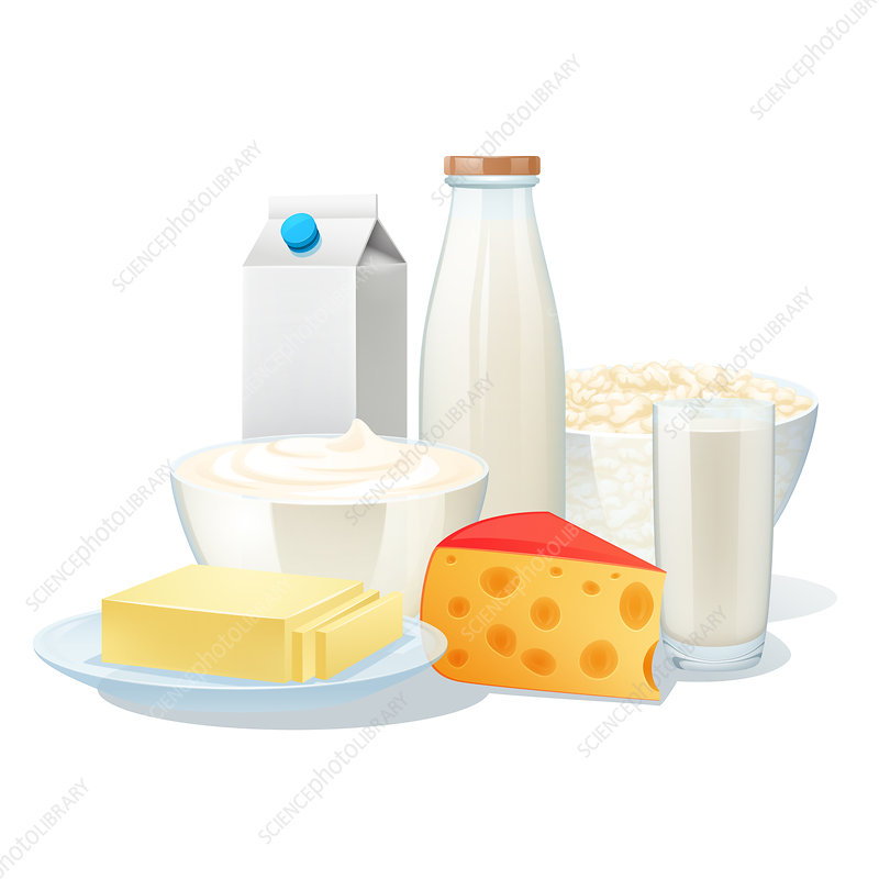 Milk products, illustration