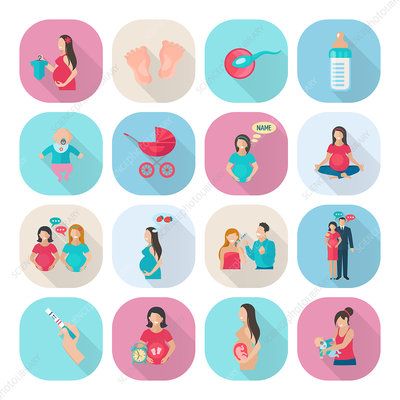 Pregnancy icons, illustration