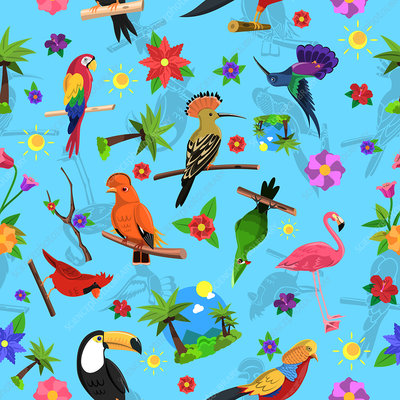 Tropical birds and flowers, illustration