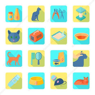 Pet cat icons, illustration