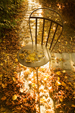 Empty chair and autumn leaves