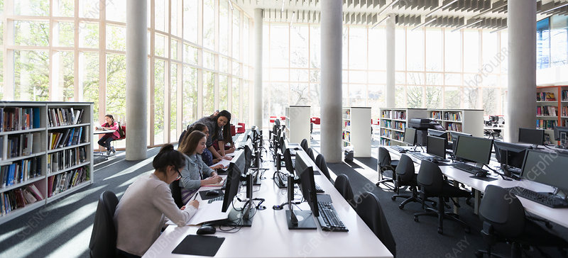 Students researching at computers